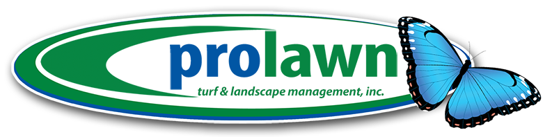 Prolawn Outdoors Logo